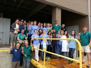 NC State College of Veterinary Medicine's 2015 Advanced Fish Medicine Selective class. CVM students spent an intensive week at CMAST for hands-on clinical work and lectures. Labs included surgery and anesthesia, diagnostics and parasitology, comparative anatomy, and a lab on water qualty and life support at the NC Aquarium at Pine Knoll Shores.