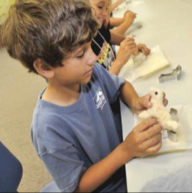 John Cooper Mason, a rising fifth-grader at Smyrna Elementary School, creates a dog from dyed alpaca fleece during The Bridge Downeast summer program at Harkers Island Elementary School (Cheryl Burke photo)