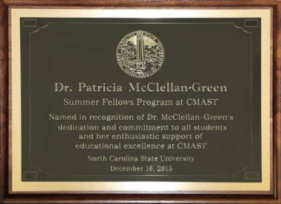 Pat McClellan-Green Summer Fellows Plaque