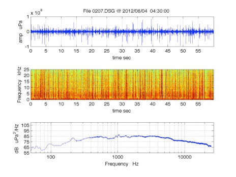 Reef Sound Example – Recorded at West Bay oyster reserve using a Loggerhead Instruments DSG acoustic recorder (20 dB gain, hydrophone sensitivity -180 dB re 1 V/µPa)