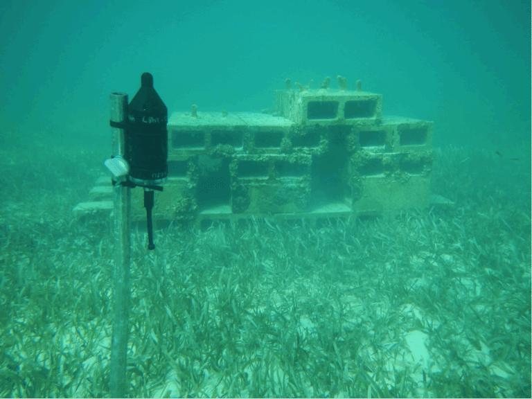 Soundscapes habitat characteristics and fish assemblages for Artificial fish habitat