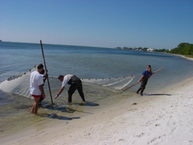 Buckel lab with seining net.