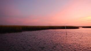Spatiotemporal Soundscape Patterns & Processes in an Estuarine Reserve
